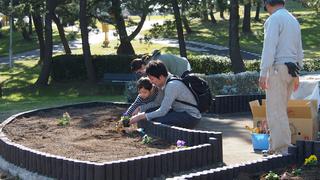 みんなの花壇006-1.jpg