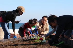 みんなの花壇8.JPG